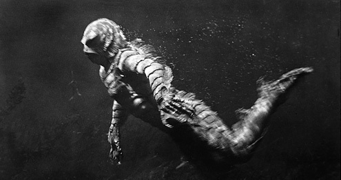 The Evolution of Gill-man